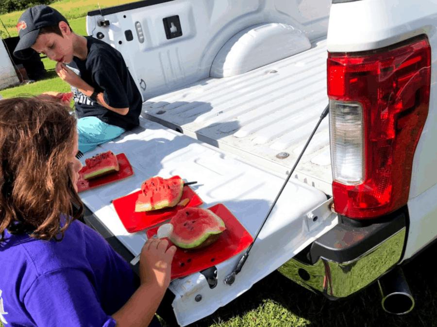 Watermelon in Dayton, Tennessee